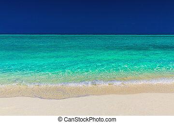 kék, vibráló, ég, tropikus, homok, zöld, tenger