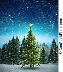 kép, összetett, karácsonyfa