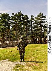 kép, közül, katona, action, a földön