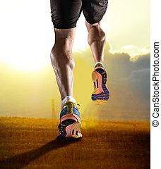 képzés, sport, út cipő, atlétikai, tréning, feláll, lábak, kocogás, napnyugta, erős, állóképesség, becsuk, combok, ember