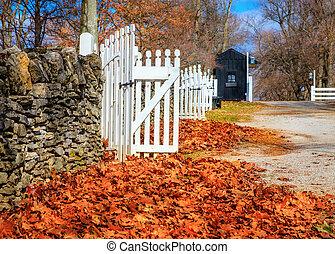 később ősz, alatt, kentucky