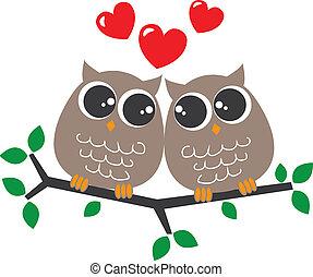 két, kellemes, baglyok, szerelemben