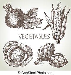 kéz, húzott, skicc, növényi, set., eco, foods.vector, ábra