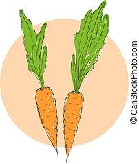 kéz, húzott, vörös haj, szerves, eco, növényi, élelmiszer, background.vector, skicc, mód, illustration.