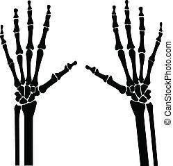kézbesít, röntgen