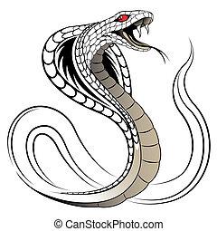 kígyó, vektor, kobra