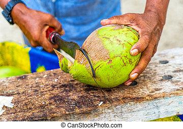 kókuszdió, nagy, feláll, seller., éles, ind, becsuk, ember
