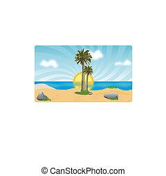 kókuszdió, tengerpart., bitófák, napnyugta, tenger, pálma, vagy, napkelte