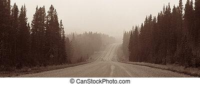 ködös, út