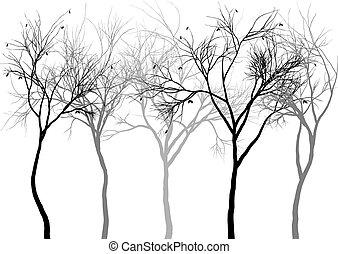 ködös, erdő, vektor