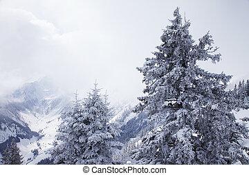 ködös, hegyek, alatt, tél