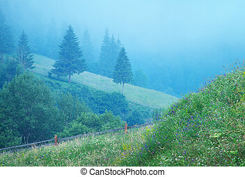 köd, alatt, hegy