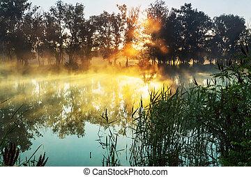 köd, folyó