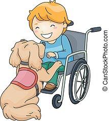 kölyök, fiú, kutya, segítség