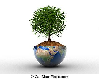 környezet, fogalom
