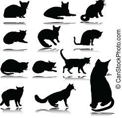 körvonal, vektor, macska