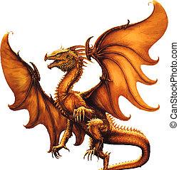 középkori, dragon., vektor