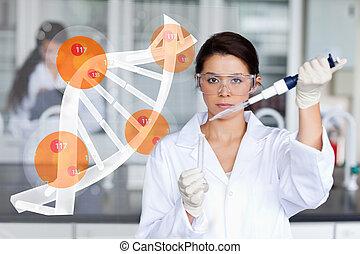 kønne, arbejder laboratorium., tilføjer, kemisk, t