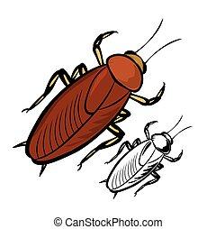 Insekt Amerikanische Kuchenschabe Wanze Stadtisch Creature