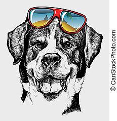 kühl, hund, künstlerisch, zeichnung