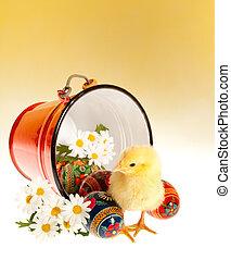küken, eier, ostern