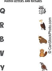 különböző, nevelési, abc, gyufa, game., letters., állatok