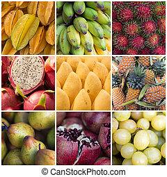 különféle, gyümölcs, kollázs