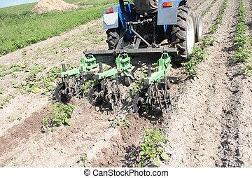 különleges, felszerelés, képben látható, egy, traktor, helyett, dudva, alatt, mezőgazdaság