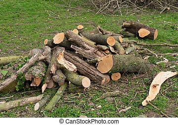 külső, kandalló, fa felhalmoz