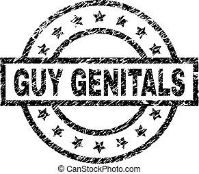külső nemi szervek, grunge, bélyeg, textured, fóka, pasas