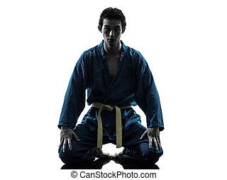 künste, silhouette, karate, kriegerisch, vietvodao, mann