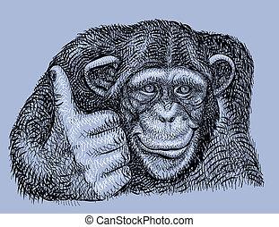 künstlerisch, schimpanse, zeichnung