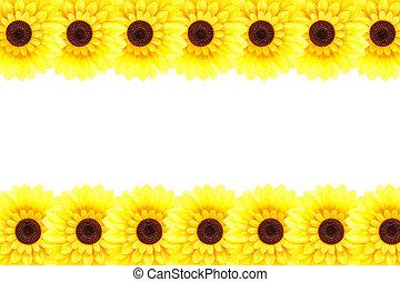 künstlich, sonnenblume, umrandungen