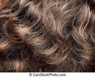 kędzierzawy włos, struktura