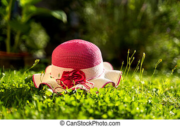 kłamstwa, piękny, zielony, dzień słoneczność, kapelusz, batyst