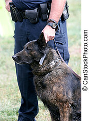 K-9 Unit of police office and dog
