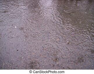 kałuża, krople, deszcz