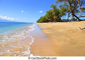 kaanapali strand