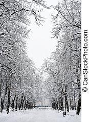 kaarli, boulevard., estonia, tallinn