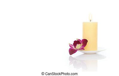 kaarsje, orchidee