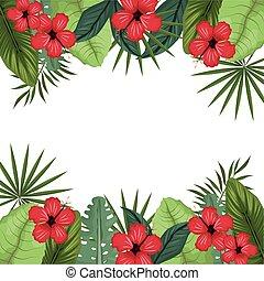 kaart, hibiscus, met, palm loof, grens