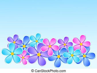 kaart, papier, groet, flower.