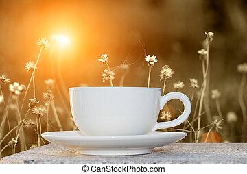 kaffe, gräs, blomma, morgon