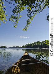 kajak, na, jezioro, shoreline