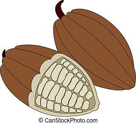 kakao, fazole