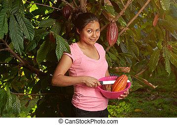 kakaový bob, osada, námět