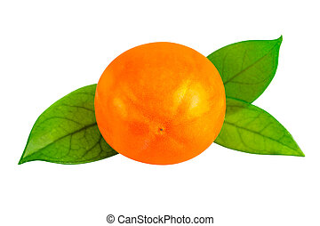 Kaki persimmon on white with clipping path. One persimmon fruit with leaf in close-up