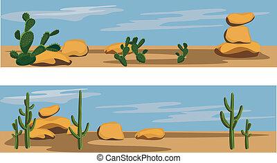 kaktus, och, öken