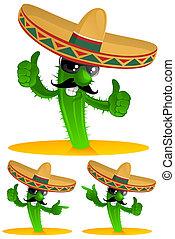 kaktus, trzy
