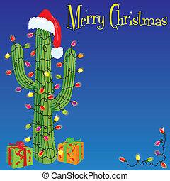 kaktus, weihnachten